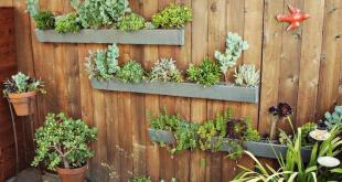 Berkebun Dengan Wadah